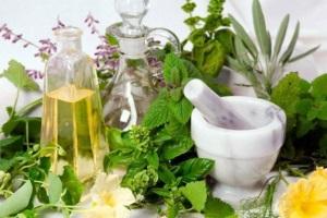 травы для похудения: отзывы