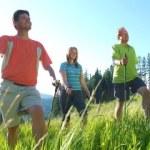 Похудение с помощью скандинавской ходьбы — как это делать правильно?