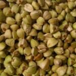 Польза и вред зеленой гречки при похудении