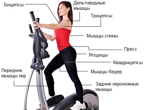 elliptical-machine-benefits