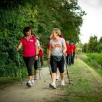 Польза и вред скандинавской ходьбы для здоровья — интересные моменты