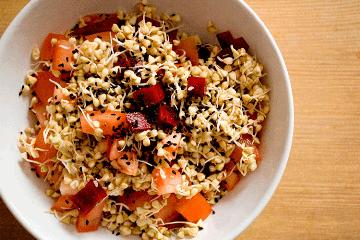 Как прорастить гречку для еды в домашних условиях