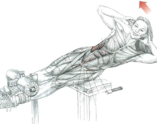 качать косые мышцы