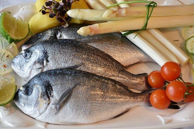 fish-2230852_640