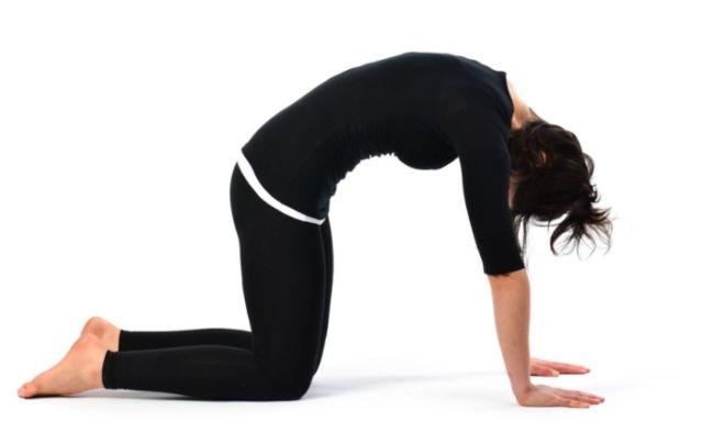 postura-del-gato-yoga-700x441