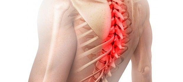 Лучшие упражнения для грудного отдела позвоночника при остеохондрозе