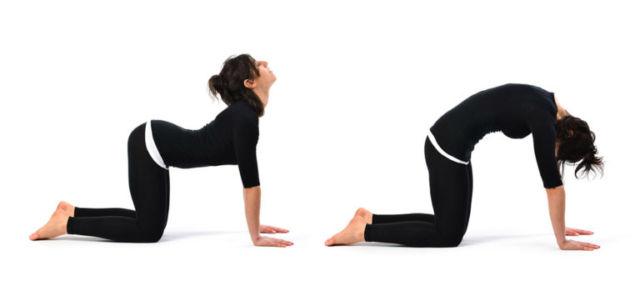 Гимнастика доктора Бубновского: оздоровление позвоночника и суставов