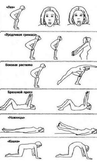 бодифлекс упражнения для похудения в картинках