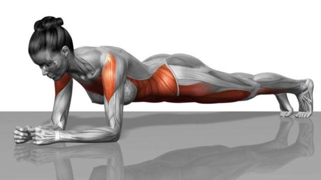 Планка каждый день: что даст упражнение и как изменится ваш организм