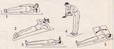 Комплекс упражнений, которые помогут победить плечелопаточный периартрит