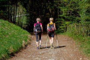 Полезные советы: как правильно выбрать палки для скандинавской ходьбы
