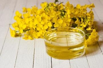 Рыжиковое масло полезные свойства применение отзывы