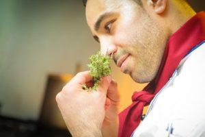 Бороться с тягой к определенному продукту можно с помощью его же запаха