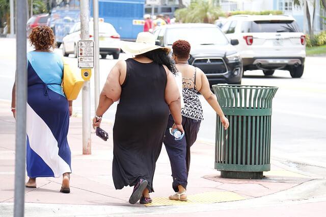 Алиментарно конституциональное ожирение – что это такое