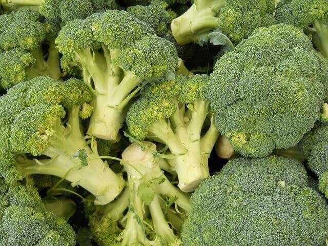 Королева капустной грядки: польза и вред брокколи для здоровья